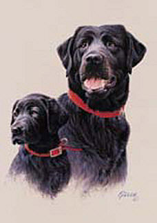 Black Labs Flags