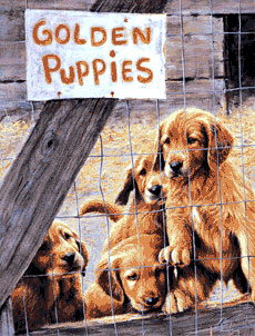 Golden Puppies Flags