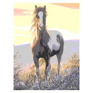 Mustang Horse Flags