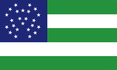 NYPD New York Flags