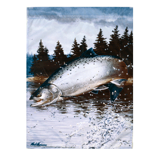 Salmon Fishing Flags