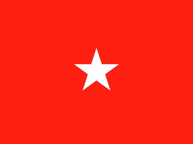 US Army Brigadier General Flags